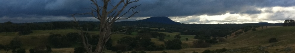 View-of-Mt-Buninyong-from-Narmbool