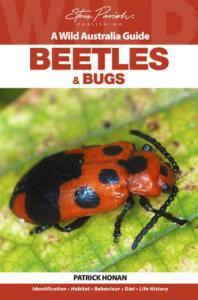 steve-parish-wild-australia-guide-beetle