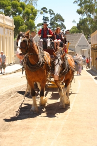 The pre-industrial word is demonstrated by the horse drawn water cart and stage coach that travel the streets at Sovereign Hill.