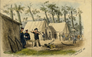 Diggers Licencing Forest Creek 1852 by S. T. Gill. Gold Museum Collection.